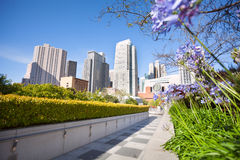Flowers in Yerba Buena Gardens park, San Francisco. Flowers in Yerba Buena Gardens park during sunny day in San Francisco, United States Stock Photos