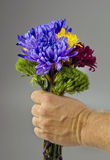 Flowers for you. Royalty Free Stock Image