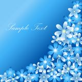 Flowers for your text frame vector illustration