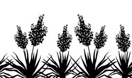 Flowers Yucca silhouette, horizontal seamless. Horizontal seamless of flowers and plants Yucca, black silhouette isolated on white background. Vector vector illustration