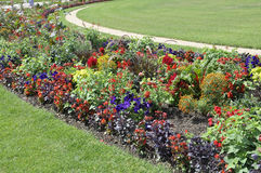 Flowersbeds from Jardin du Luxembourg from Paris in France Stock Image