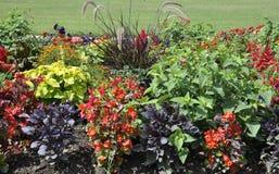 Flowersbeds von Jardin DU Luxemburg von Paris in Frankreich stockfotografie