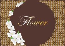 flowerses белые Иллюстрация штока