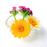 Flowerses In Vase Royalty Free Stock Image