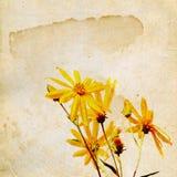 Flowerses jaunes de zone illustration libre de droits
