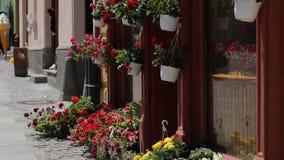 Flowershop 股票录像