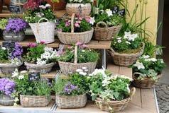 Flowershop Stock Photos