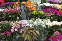 Flowershop Stock Image