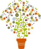 FlowerSpring Stock Image