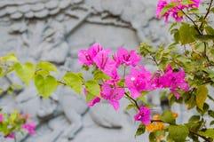 Flowerss and China architecture Stock Photo