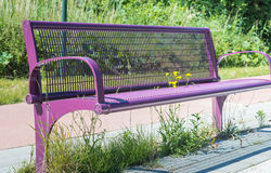 Flowery bench. Yellow flowers growing through the metal mesh seat of a purple couch along the side of the road stock photo
