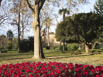 Flowery Corner Ciutadella Park. Royalty Free Stock Photos