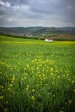 Flowery Countryside. Beautiful and flowery countryside with a house in a distance on a cloudy Spring day stock images