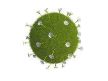 Flowery globe Stock Image
