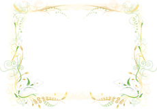 Flowery Green and Orange Frame Stock Photos