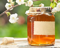Flowery honey in glass jar. Honey jar with blank paper label, flower and wooden stick on table against green spring natural background Stock Photography