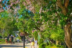 Flowery Mackinac street Royalty Free Stock Photos