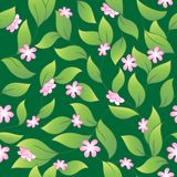 Flowery seamless background 2 Stock Photo