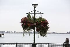 Flowery Street Lamp Stock Image