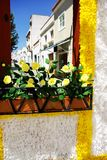 Flowery streets, Redondo village, Portugal. Stock Photos