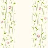 Flowery vine background illustration Stock Photo