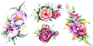 Flowes da peônia do rosa do ramalhete da aquarela Flor botânica floral Elemento isolado da ilustração ilustração royalty free