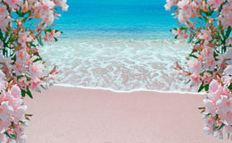 Flowes and pink shore Stock Image