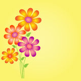 Flowesr Illsytration on Yellow Background, Flower Card. Flowers illustrations on yellow background, yellow flowers, pink flowers, purple flowers, green leaves Royalty Free Stock Photography