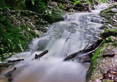 Flowing. Small brook in Carpathians mountains Royalty Free Stock Image