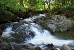 Flowing. Water fall on New England Brook stock images