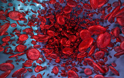 Flowing Blood Cells in Vein Stock Photography