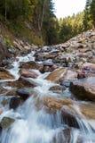 Flowing brook Stock Image