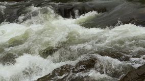 Flowing clear river water stream. Flowing clear river water stream with white and transparent bubbles with splashes. Powerful waterfall on river rapids. Video stock video
