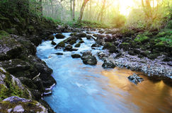 Flowing colourful river Stock Photography