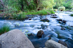 Flowing Creek Stock Photography
