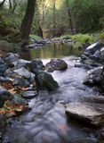 Flowing Creek. Long exposure of a small natural creek in motion Royalty Free Stock Photography