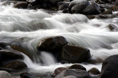 Flowing creek. Flowing rocky creek Stock Photos