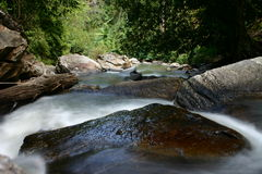 Flowing Creek Royalty Free Stock Image