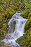 Flowing Creek Cascades stock photography