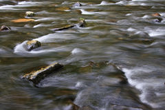 Flowing Creek Water Stock Images