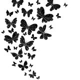 Flowing curving design of flying butterflies. Flowing curving design of different shaped black and white flying butterflies with outspread wings in a diminishing royalty free illustration
