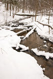 Flowing forest stream water in winter. Coast snow Royalty Free Stock Images