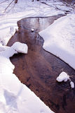 Flowing forest stream winter coast snow Stock Photos