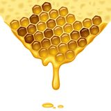 Flowing honey Royalty Free Stock Image
