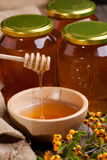 Flowing honey and berries Stock Images
