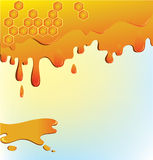 Flowing honey and honeycomb Stock Images