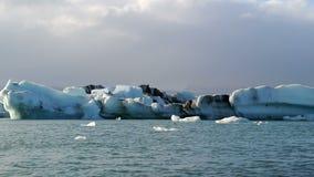Flowing Icebergs Stock Image