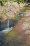 Flowing Mountain Stream Stock Image
