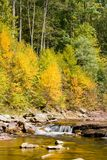Flowing Mountain Stream in Autumn. Autumn along the Red Creek in the Dolly Sods Wilderness Area in West Virginia Stock Photos