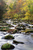 A flowing mountain stream in Smoky Mountain National Park. A Beautiful stream in Smoky Mountain National Park Royalty Free Stock Images